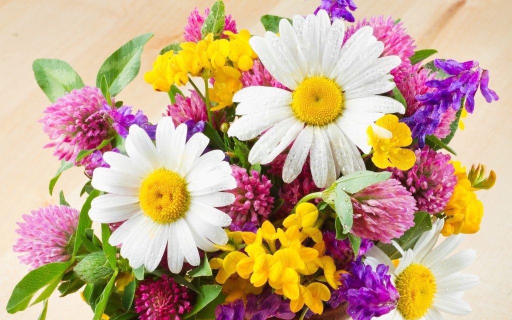 Nature___Flowers_Bouquet_of_field_flowers_042344_.jpg